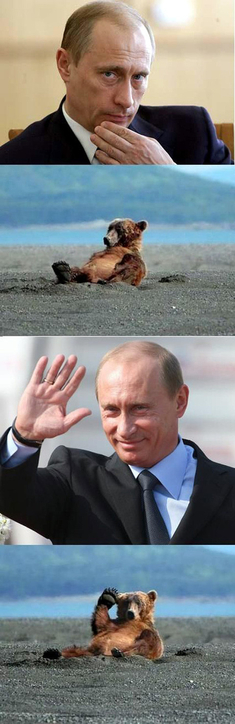 Putinbear